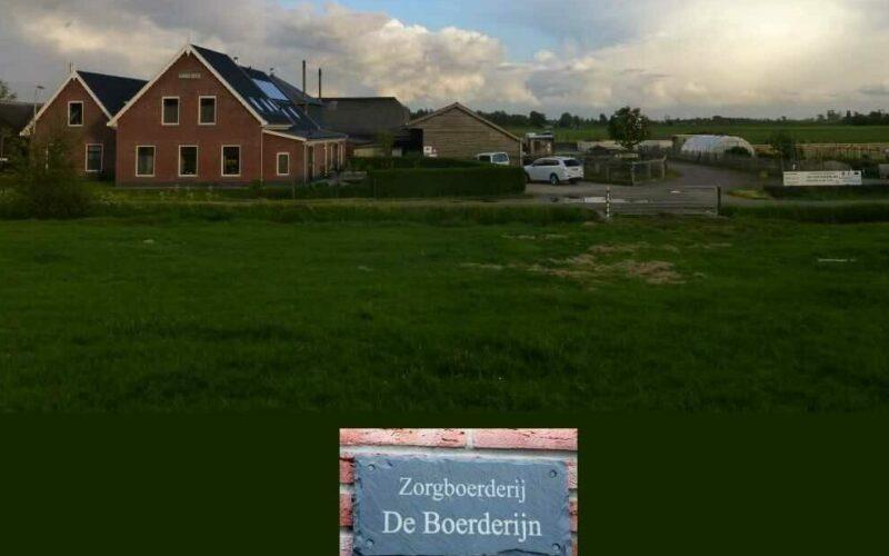 Overzicht van de Zorgboerderij de Boerderijn met weiland en het boerderij gebouw